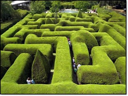 [Labyrinthe]